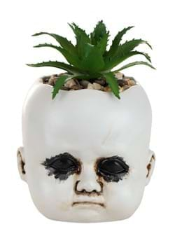 Distressed Doll Succulent