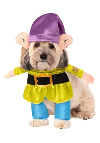 Click Here to buy Dopey- Disney Princess Dog Costume from HalloweenCostumes, CDN Funds & Shipping