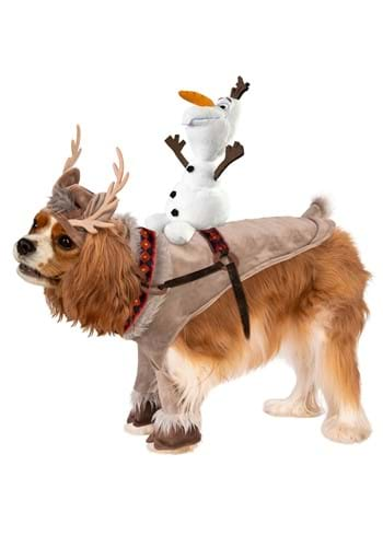 Click Here to buy Sven- Disney Princess Dog Costume from HalloweenCostumes, CDN Funds & Shipping
