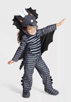 Toddler Dark Dragon Costume