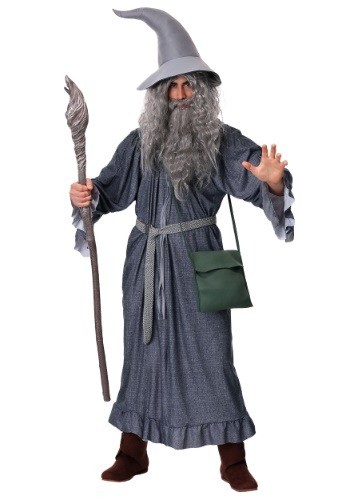 Click Here to buy Adult Gandalf Costume from HalloweenCostumes, CDN Funds & Shipping