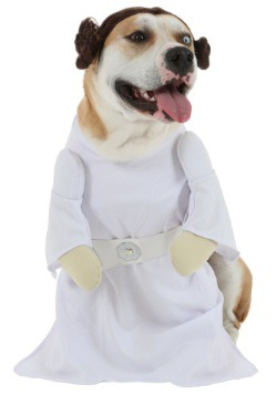 Princess Leia Dog Costume