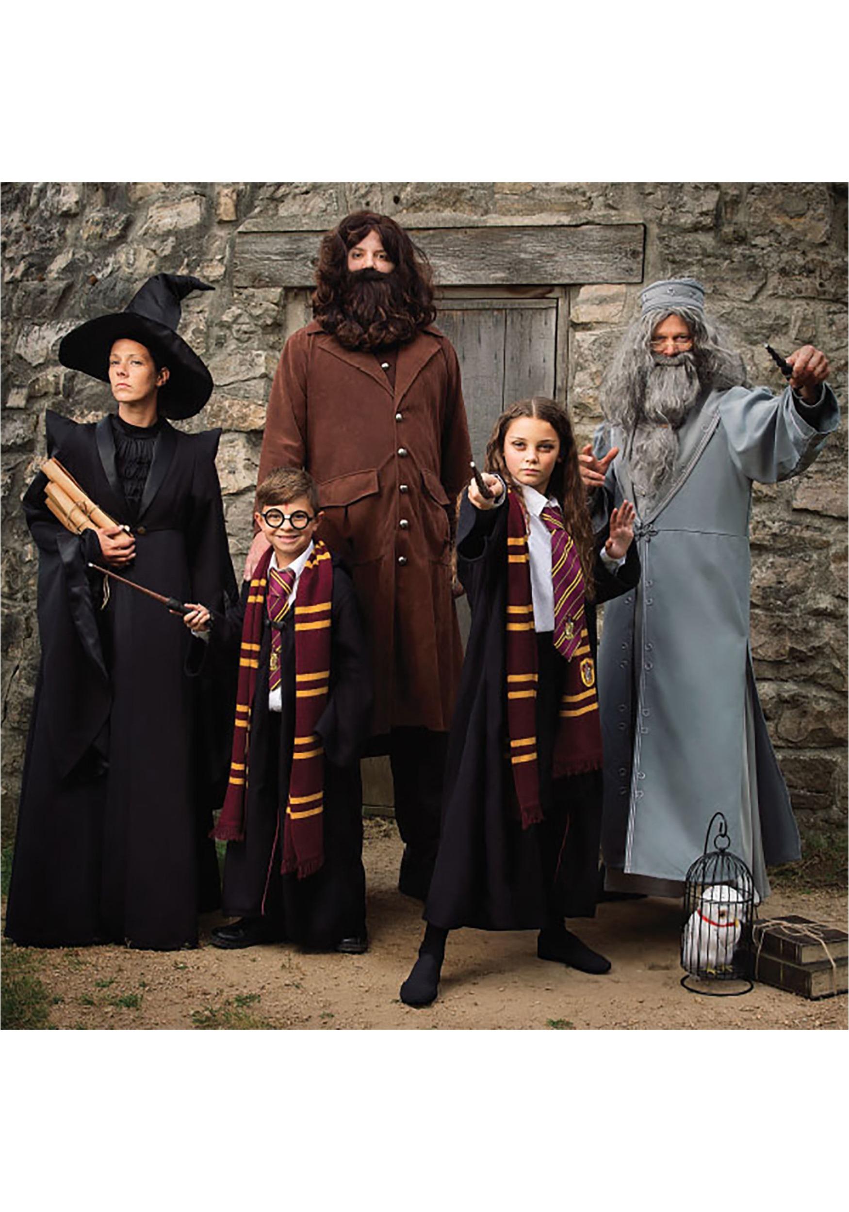 Risultati immagini per harry potter costume