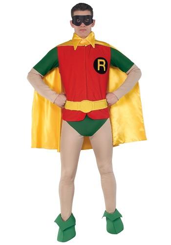 Authentic Classic Robin Costume